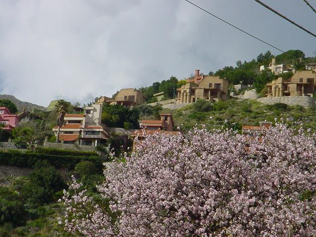Palermo Mondello Collina di Pizzo Sella