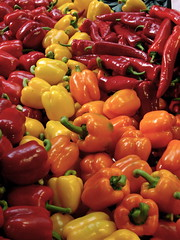 plant(0.0), paprika(1.0), cayenne pepper(1.0), chili pepper(1.0), bell pepper(1.0), vegetable(1.0), tabasco pepper(1.0), peppers(1.0), bell peppers and chili peppers(1.0), italian sweet pepper(1.0), bird's eye chili(1.0), peperoncini(1.0), produce(1.0), fruit(1.0), food(1.0), pimiento(1.0), habanero chili(1.0),