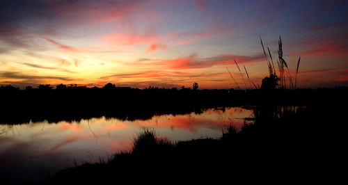 sunset red water yellow d50 thailand pond place 28 jons 1755