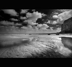 BEACHES ~ BLACK  WHITE
