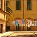 ... nel cortile! by antonioprincipato
