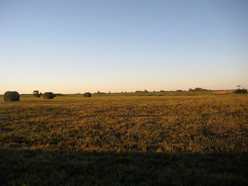 Canadian prairie landscape on a Summer morning