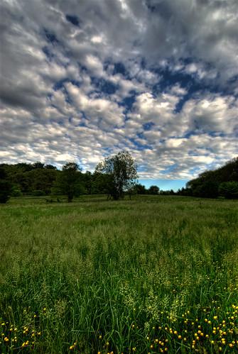 sky field clouds nikon 1224mmf4g delaware d200 wilmington nikkor hdr bellevuestatepark