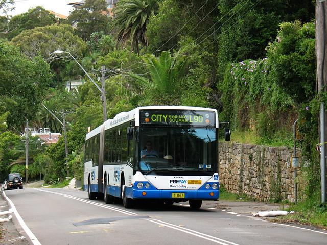 Palm Beach Bus