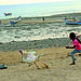 Turkey Chase on Chowpatty Beach