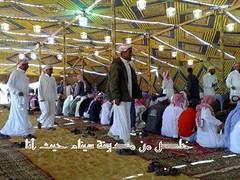 مؤتمر قبائل وعشائر سيناء بوادي العمر سيناء 3