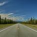 Small photo of The Alaska Highway