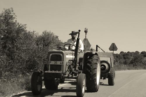Cara de Velocidad (Vila do Bispo, Algarve)