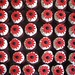 Gerbera Wedding Cupcakes