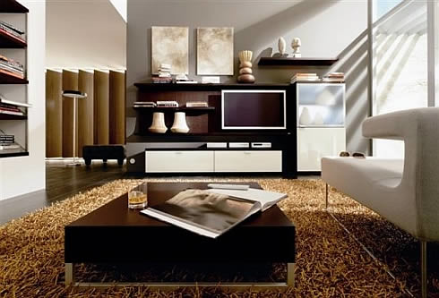 Decoration Dw Home Storage Ideas For Living Room