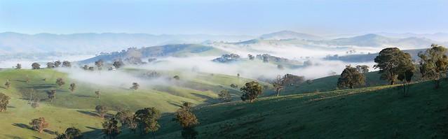 Nature ensay with mist flickr photo sharing for Trodel mobel
