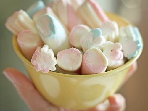 Cup of Marshmallow