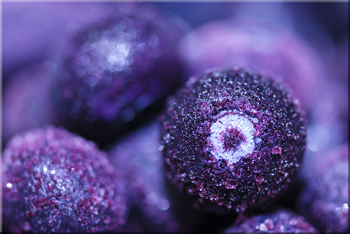 Frozen Blueberry Bokeh! DSC_2646