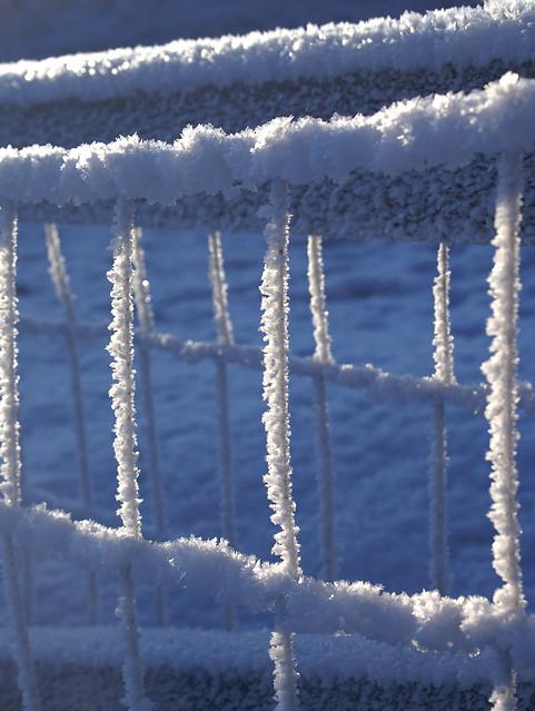 Fence Details 4 Flickr Photo Sharing