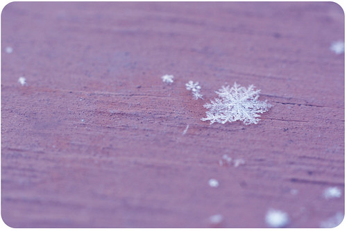 """Snowflakes are kisses from heaven..."""