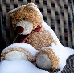 teddy bear(1.0), textile(1.0), fur(1.0), plush(1.0), stuffed toy(1.0), bear(1.0), toy(1.0),