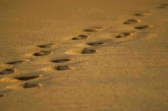 Footsteps at Sunset
