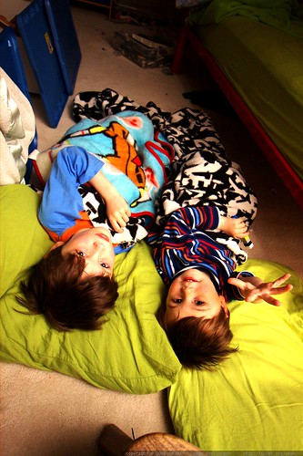 nick and sequoia bed down together in the fort nick built on the bedroom floor    MG 1100