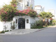Porte extérieure en fer forgé, Tunis