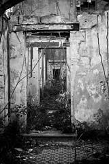Abandoned House (03) - 21Mar09, Montcalm (France)