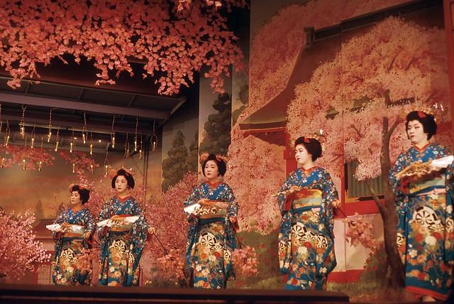 Maiko Spring Dance (1) Miyako Odori