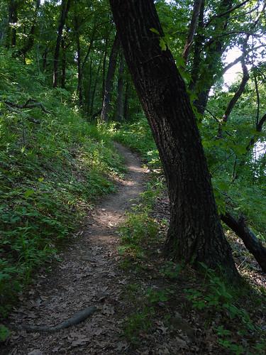 oklahoma greenleafstatepark ankleexpresstrail 201005kerrtenkillergreenleaf greenleaflake