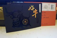 2009 好牛賀卡