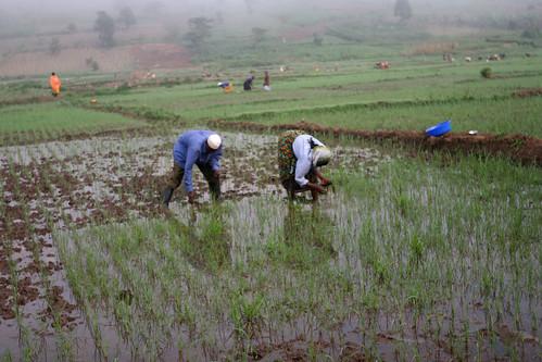 Rwanda: 15 years on - Ramadhan's story