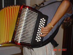 percussion(0.0), hand drum(0.0), wind instrument(0.0), accordion(1.0), diatonic button accordion(1.0), folk instrument(1.0), button accordion(1.0), garmon(1.0),