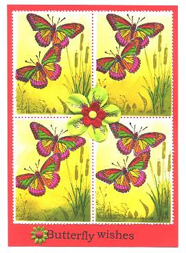 Butterfly/SPA