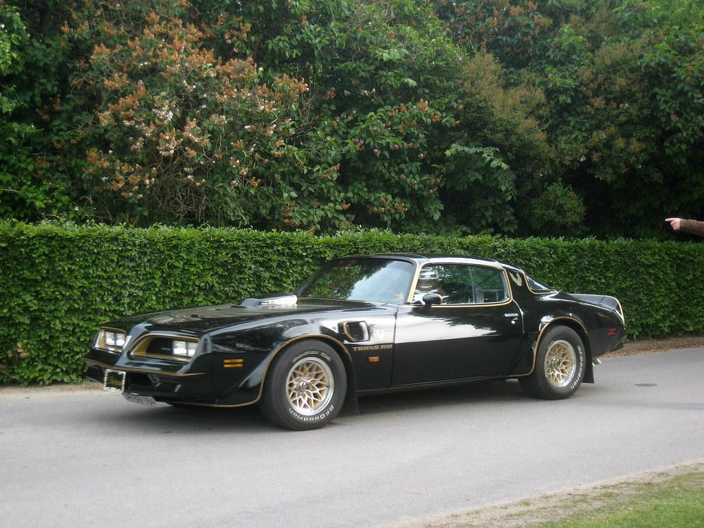 Pontiac Trans Am Blackbird (1977) - a photo on Flickriver