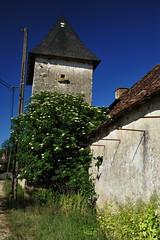 24 SAINT VINCENT SUR L'ISLE-Triadour - Photo of Montagnac-d'Auberoche