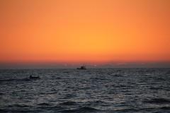 Goa February 2014
