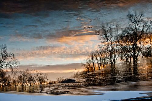 trees sunset ice shenandoahriver photoblog2009