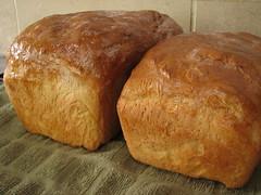 tsoureki(0.0), dessert(0.0), meal(1.0), breakfast(1.0), baking(1.0), bread(1.0), baked goods(1.0), food(1.0), brown bread(1.0), brioche(1.0), sourdough(1.0),