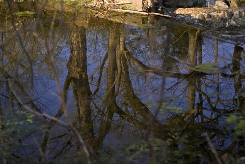 blue trees sunset brown reflection green broken water stone canon eos 50mm waterfall still pond calm depthoffield wispy f12 1635mm 40d