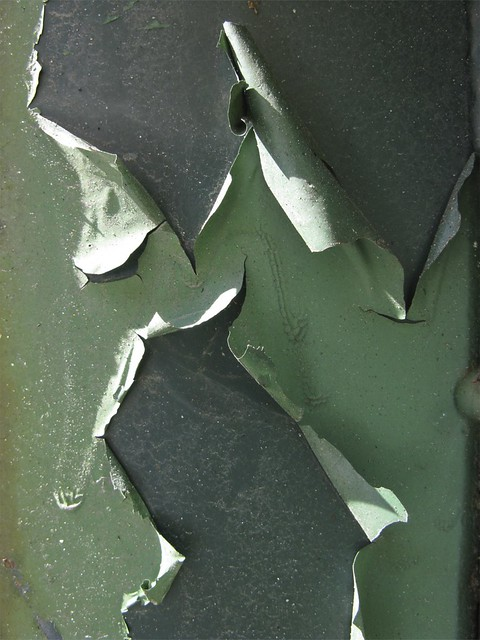 Dumpster Texture Peeling Green | Flickr - Photo Sharing!