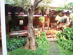 PB260534 Pak Pak Chiang Mai
