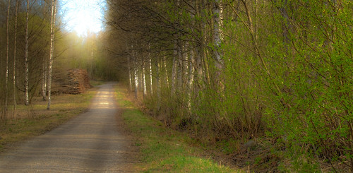 road strange 35mm landscape spring view photoshopped dream olympus e510 zd aplusphoto