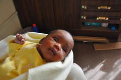 Serowe Baby