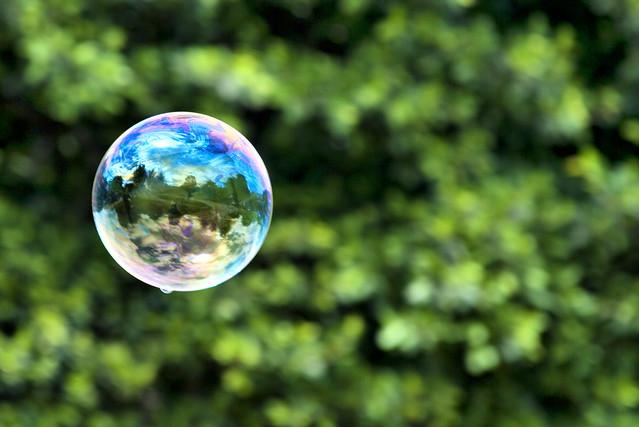 Burbujas de jabón (1)