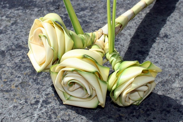 Palm Leaf Roses