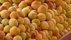 plant(0.0), apricot(1.0), peach(1.0), produce(1.0), fruit(1.0), food(1.0),