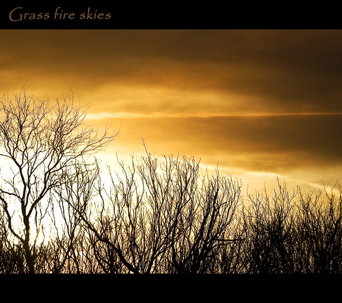 grass fire skies