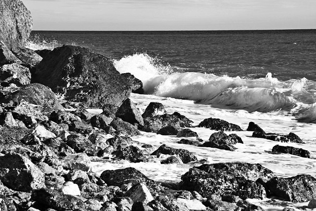 Mar de Rocas en Blanco y Negro