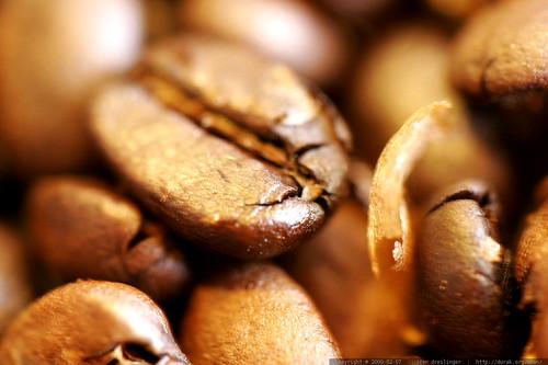 macro coffee oregon beans bean hobby drug addiction chaff roasting roasted lakeoswego brokencamera homeroasting fullcity ovenroasted firstcrack secondcrack 20090207 malfunctioningcanoneos20d rwandakinunu