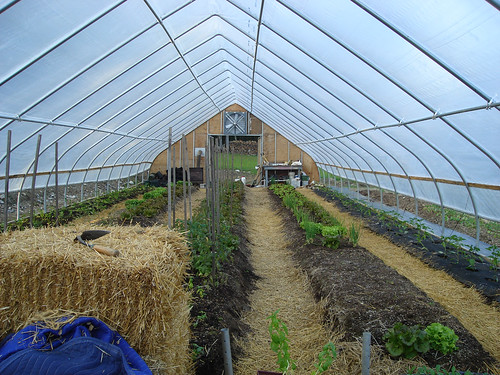 Greenhouse at the Squire Tarbox Inn