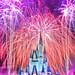 Disneyworld by Night by Ben Hewitt