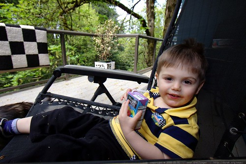 taking it easy   home sick, having a juice box on the back deck    MG 3171