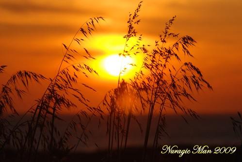 Do you like sunset?